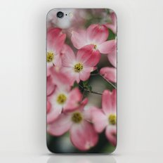 The Quiet Ones iPhone & iPod Skin