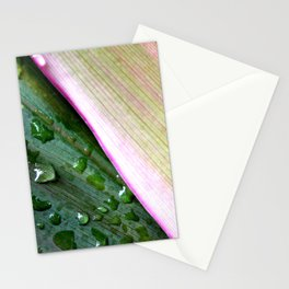 Organic Ombre Stationery Cards