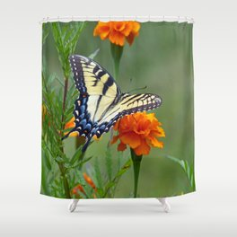 Yellow female Eastern Tiger Swallowtail  Shower Curtain