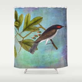 Eastern Kingbird and Sassafrass, Antique Natural History Art Collage Shower Curtain
