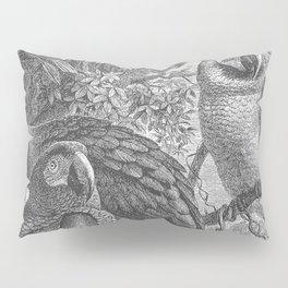 Parrots - Macaws Pillow Sham