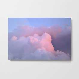 pink floofs Metal Print