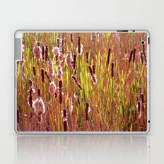 cattails Laptop & iPad Skin