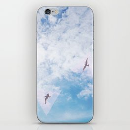 Flight Path iPhone Skin
