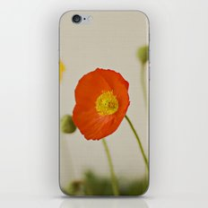 Orange Poppy Bloom Red Green Yellow Flower iPhone & iPod Skin