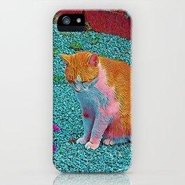Popular Animals - Cat iPhone Case