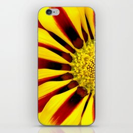 Red and Yellow Daisy iPhone Skin