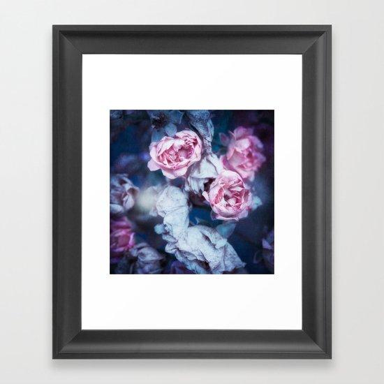 WINTER ROSES Framed Art Print