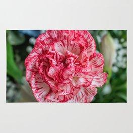 Carnation Rug