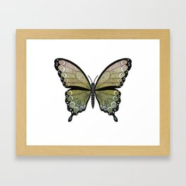 mossy seraph (Seraphicus meos) Framed Art Print