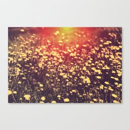 Will You Remember Me Then Canvas Print