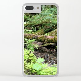 Creek and trunk crossing Clear iPhone Case