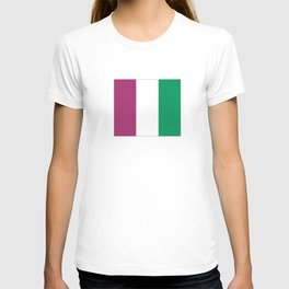 Flag of the suffragettes T-shirt