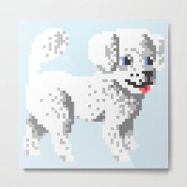 Small Dog #8 Metal Print