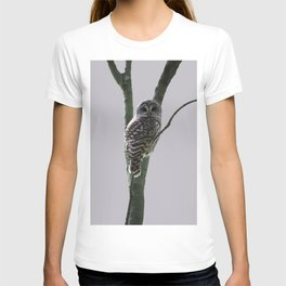 Barred Owl with Grey T-shirt