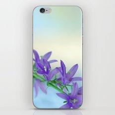 Tender Blue 5 iPhone & iPod Skin
