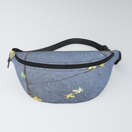 Fractured Fanny Pack
