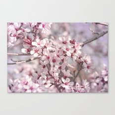 Icy Pink Blossoms - In Memory of Mackenzie Canvas Print