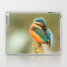Kingfisher Laptop & iPad Skin