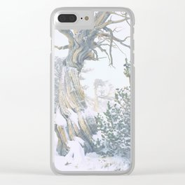 Ancient Tree, Twisted in the Wind/Windy Ridge, Colorado Clear iPhone Case