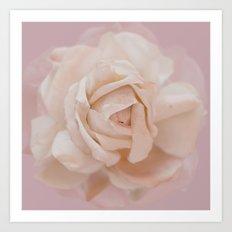 DUSKY ROSE Art Print