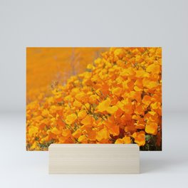 Golden Meadow of California Poppies in Bloom by Reay of Light Photography Mini Art Print