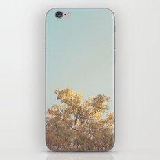 It's a Beautiful Day iPhone & iPod Skin