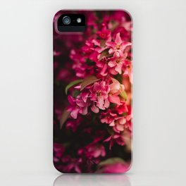 Beauty of Spring I iPhone Case