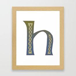 Celtic Knotwork Alphabet - Letter H Framed Art Print