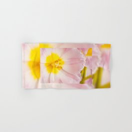 Yellow stamen of pink tulip Hand & Bath Towel