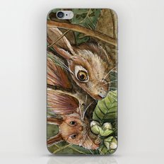 Bunny, squirrel and nuts A068 iPhone & iPod Skin