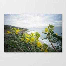 Flower Power - Malibu Canvas Print