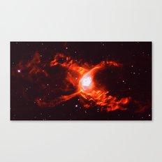 299 792 458 m/s Canvas Print
