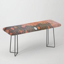 Urban Layers Bench
