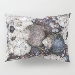 Periwinkles and Barnacles on a rock Pillow Sham