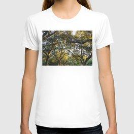 Savannah Forsyth Park VI T-shirt