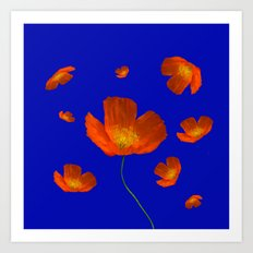 Poppies in th sun Art Print