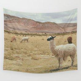 Lama Pampa bolivie Wall Tapestry
