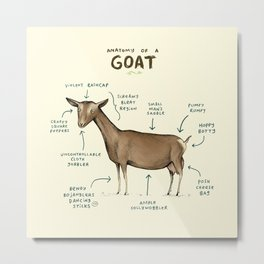 Anatomy of a Goat Metal Print