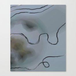 Sideral Ribbon Canvas Print