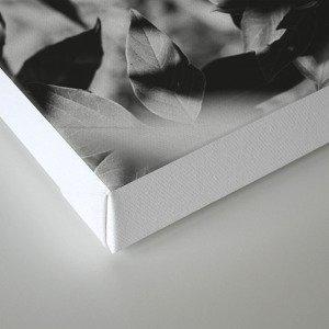 shade Canvas Print