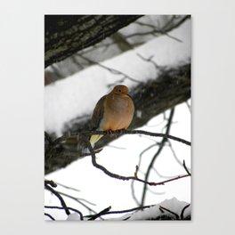 During A Quiet Snow Canvas Print