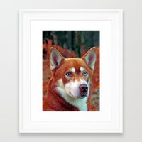 ginger Framed Art Prints featuring ginger by Doug McRae
