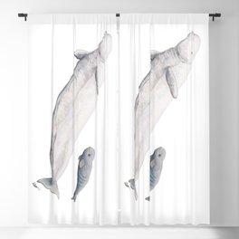 Beluga and baby beluga whale Blackout Curtain