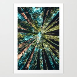 Treetop green blue Art Print