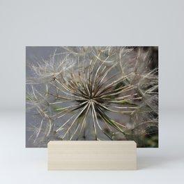 Giant Dandelion Mini Art Print