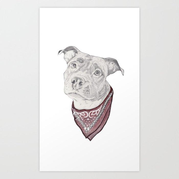 pitbull//dog Kunstdrucke