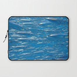 Fish shoal of common bellowsfish Laptop Sleeve
