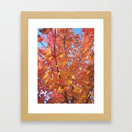 Leaves. Framed Art Print