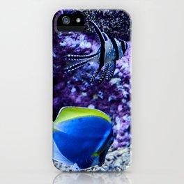 Swim Buddies iPhone Case